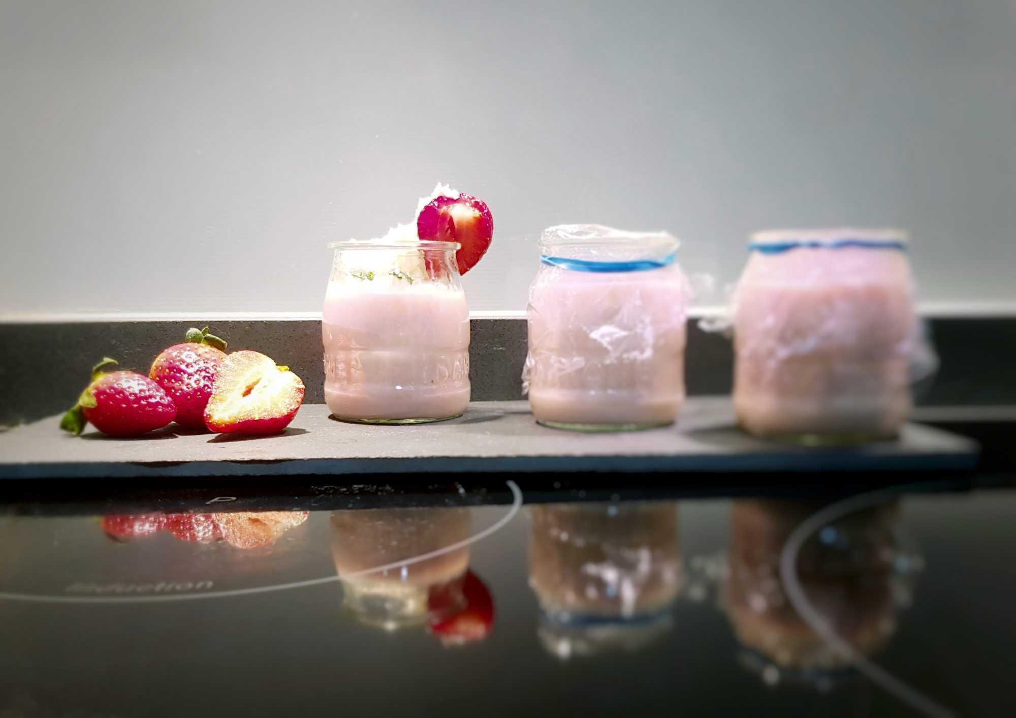 recopilatorio de natillas en la thermomix