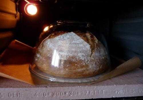Pan casero de harina común thermomix